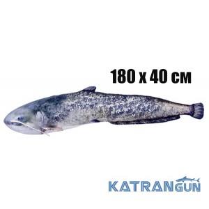 Подушка-игрушка Mega Сом (180х40 см)