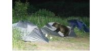 Что делать при встрече с медведем в походе