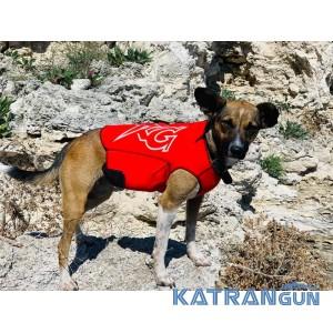 Гідрокостюм для собак Katrangun; індивідуальне пошиття